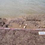 Rinvenimenti neolitici