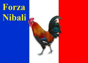 national_animals_french_cockerel_article