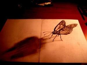 farfalla-300x225