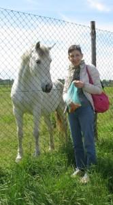 Asso il Cavallo