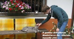 I viaggi dei due viandanti: Mattia e Er Carogna