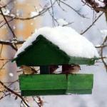 trentino_-_mangiatoia_per_uccelli._-_2011_-_large
