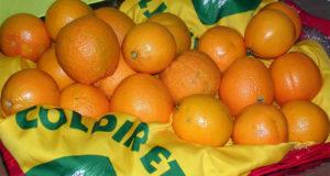 """Le arance """"made in Italy"""" di Campagna Amica ad Alessandria"""