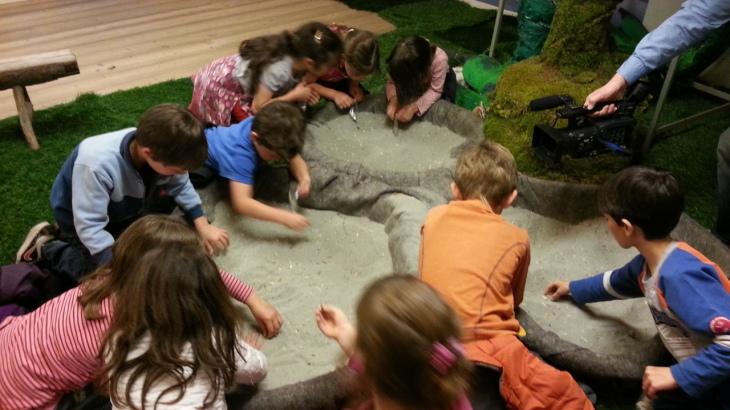 Campomorone, Carnevale al Museo di Paleontologia
