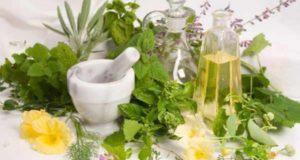 Erbe medicinali: come riconoscerle? Un corso a Urbe