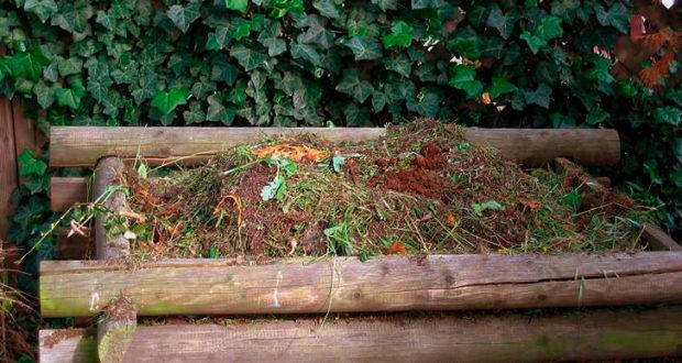 Campomorone, un corso sul compostaggio domestico