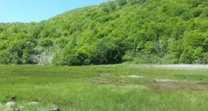 Parco del Beigua, alla scoperta della Torbiera del Laione