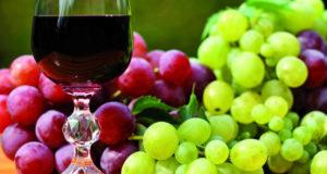 Il vino novello alla Cantina Sociale di Mantovana