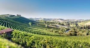 Co-design applicato al turismo, Informazione&Comunicazione Progettazione del Monferrato