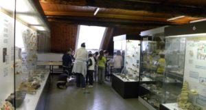 Campomorone, laboratorio didattico al Museo di Paleontologia