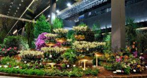 Euroflora trasforma i parchi tra magia, profumi e colori