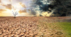 Confagricoltura in occasione della Giornata Mondiale della lotta alla desertificazione