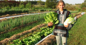 Agricoltura biologica, pubblicato il nuovo regolamento